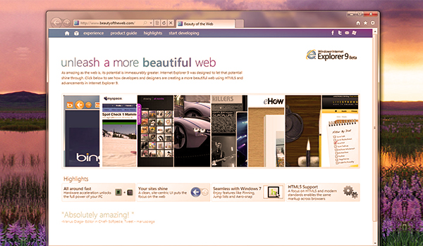 Internet Explorer die